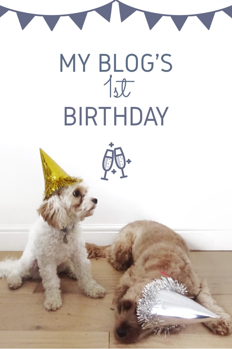 One Year of Blogging | What I've Learnt